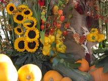 Decoraci?n estacional de la cosecha del oto?o Concepto de la acci?n de gracias, de Halloween y de la agricultura foto de archivo libre de regalías