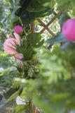 Decoración falsa rosada de la boda del flamenco con las flores del Anthurium y Foto de archivo libre de regalías