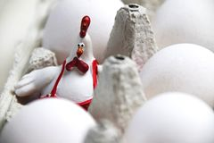 Decoración feliz del gallo de Pascua y huevos crudos fotografía de archivo libre de regalías