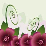 Decoración floral Foto de archivo