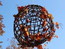 Decoración floral del otoño almacen de metraje de vídeo