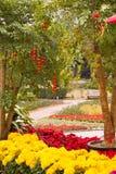 Decoración floral y de la linterna en jardín Imágenes de archivo libres de regalías