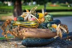 Decoración hermosa del otoño Fotos de archivo