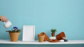 Decoración moderna del sitio con la maqueta del marco Estante blanco contra la pared en colores pastel de la turquesa con cerám