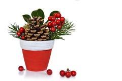 Decoración natural de la Navidad aislada en blanco Imagen de archivo libre de regalías
