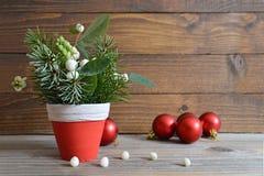 Decoración natural de la Navidad y bolas rojas Fotografía de archivo libre de regalías