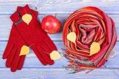Decoración otoñal, guantes y mantón de lana para la mujer, ropa para el otoño o invierno Fotos de archivo