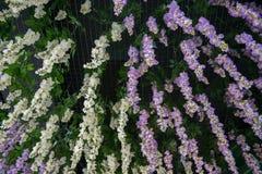 Decoración plástica de la flor Imágenes de archivo libres de regalías