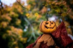 Decoración principal de Halloween de la calabaza Imagenes de archivo