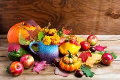 Decoración rústica colorida de la acción de gracias con las manzanas y las calabazas Fotografía de archivo