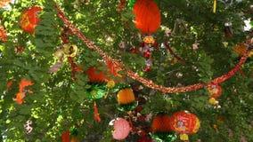 Decoración roja china del Año Nuevo en un árbol