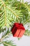 Decoración roja de la caja del árbol de navidad Imagen de archivo libre de regalías