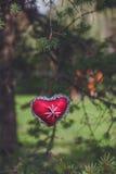 Decoración roja de la materia textil del corazón del pino Imagen de archivo libre de regalías