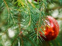 Decoración roja de la Navidad de la bola de cristal Fotos de archivo libres de regalías