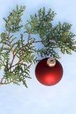 Decoración roja de la Navidad en árbol de pino nevado al aire libre fotos de archivo libres de regalías