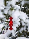 Decoración roja en rama de la conífera Foto de archivo