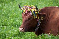 Decoración tradicional de la vaca Imagen de archivo libre de regalías