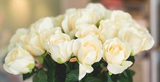 Decoración Vintage-retra de la rosa del blanco fotos de archivo libres de regalías