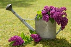 Decoración violeta de la lila en una poder del agua Imagen de archivo libre de regalías