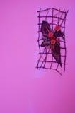 Decoración violeta de la pared Fotografía de archivo libre de regalías