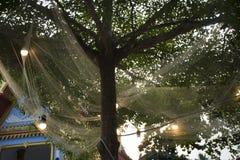 Decoración y accesorio en árbol en el jardín del festival de la MOD de la explosión Foto de archivo