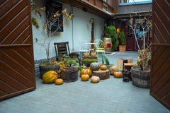 Decoración y calabaza del otoño Imagen de archivo