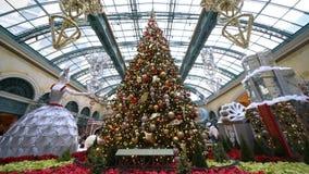 Decoraci?n de la Navidad del invernadero de Bellagio y de los jardines bot?nicos almacen de video