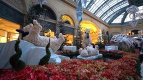 Decoraci?n de la Navidad del invernadero de Bellagio y de los jardines bot?nicos almacen de metraje de vídeo