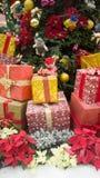 Decoraciones al aire libre de la Navidad Imagen de archivo libre de regalías