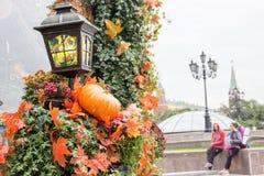 Decoraciones al aire libre del otoño en el festival de la ciudad Calabaza y hojas de arce anaranjadas, flores minúsculas amarilla imagen de archivo