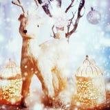 Decoraciones con los ciervos encantadores blancos Imagenes de archivo