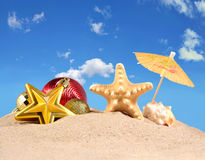 Decoraciones, conchas marinas y estrellas de mar de la Navidad en una arena de la playa Fotografía de archivo libre de regalías