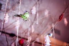 Decoraciones creativas del lugar que se casan con los pájaros que localizan en el árbol fotografía de archivo