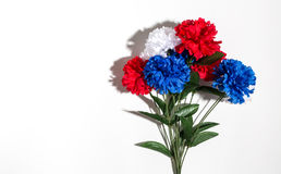 Decoraciones de la flor del día de fiesta de los E.E.U.U. en un fondo blanco Foto de archivo libre de regalías