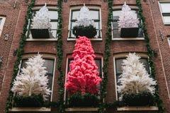 Decoraciones de la Navidad en Amsterdam Árboles de navidad en las ventanas del exterior de las casas Celebración, Año Nuevo Foto de archivo libre de regalías