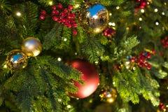 Decoraciones de la Navidad en el abeto de las ramas Imagenes de archivo