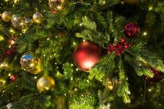 Decoraciones de la Navidad en el abeto de las ramas Imagen de archivo libre de regalías