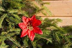 Decoraciones de la Navidad en el fondo del abeto Imagen de archivo