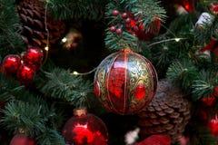 Decoraciones de la Navidad en las ramas del árbol de abeto Foto de archivo