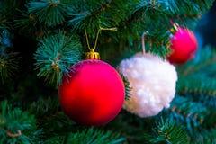 Decoraciones de la Navidad en las ramas del árbol de abeto Fotos de archivo