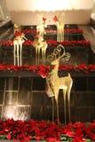 Decoraciones de la Navidad en Singapur Foto de archivo