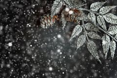 Decoraciones de la Navidad en un fondo negro Foto de archivo libre de regalías