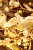 Decoraciones de oro de la Navidad Fotografía de archivo