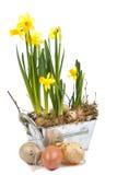 Decoraciones de Pascua Imagenes de archivo