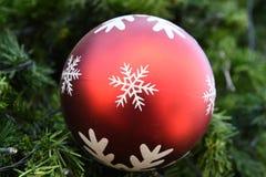 Decoraciones del árbol de navidad del primer Foto de archivo