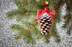 Decoraciones del árbol de navidad en una rama spruce Imagenes de archivo