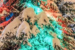 Decoraciones del ` s del Año Nuevo al aire libre en un árbol de abeto nevado Imagenes de archivo