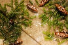 Decoraciones del ` s del Año Nuevo en ramas de la arpillera y de árbol Imagen de archivo