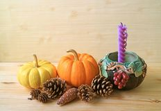 Decoraciones estacionales con las calabazas maduras del color vibrante, muchos conos del pino y la vela púrpura en tenedor del ad Foto de archivo libre de regalías