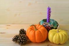 Decoraciones estacionales minimalistas con las calabazas maduras del color vibrante, los conos del pino y la vela púrpura en tene Fotos de archivo